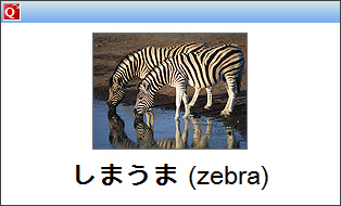 StudyMinder Flash Card with image and foreign language characters